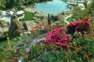 plan d'aménagement piscine et jardins